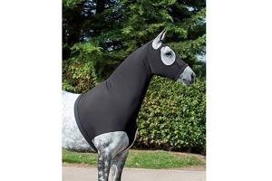 LeMieux Lycra Hood - Black, Large