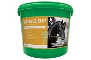 Global Herbs Muscleup 1kg - Clear, 1Kg