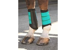 Shires Arma Neoprene Brushing Boots Teal Cob