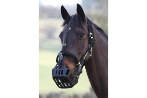 Greenguard Headcollar Black Full Size For A Shires Anti Grazing Muzzle
