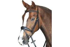Collegiate Mono Crown Padded Raised Flash Bridle Black Full