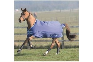 Saxon 600D 200g Medium Weight Standard Neck Turnout Rug Navy/Light Blue
