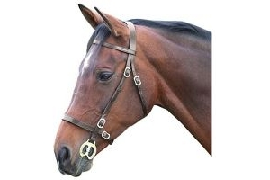 Shires Blenheim Plain Inhand Bridle