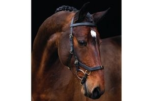 RAMBO Horseware Ireland Micklem Multi Bridle (Black, Pony)
