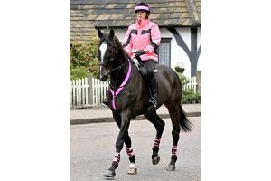 Equisafety Polite Reflective Neckband: Pink