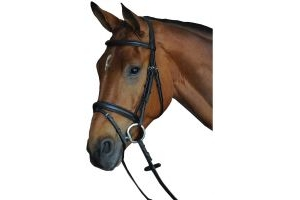 Collegiate Comfort Crown Padded Raised Flash Bridle Black