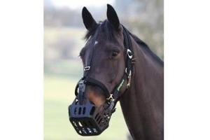 Shires Greenguard Headcollar: Black: Pony