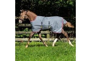 Horseware Ireland Amigo Foal Rug ARRH1V [Excalibur/Purple & Yellow, 5'0 - 5'6]