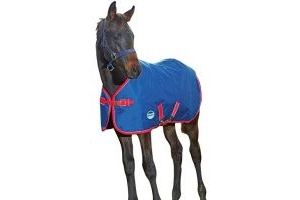 WeatherBeeta Original 1200D Foal Turnout - Navy/Red/White: 4ft6