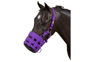 Roma Grazing Muzzle: Purple: Cob