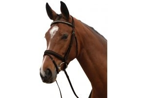 Kincade Padded Crystal Crank Flash Bridle Brown