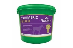Global Herbs Turmeric Gold Pure Powdered Root Horse PonyEquine Supplement 1.8KG