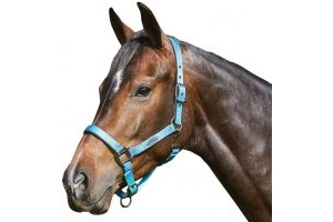 WeatherBeeta Prime Ombre Headcollar Ocean Breeze