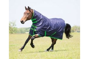 Bridleway Ontario Lightweight Combo Turnout Rug: Navy/Green: 5 ft 9