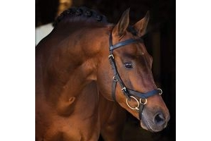 Horseware Rambo Micklem Multibridle Cob Black