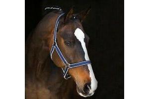 HORSEWARE AMIGO HEADCOLLAR NAVY/SILVER COB NEW