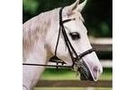 Equilibrium Net Relief Muzzle Net - Cob/Horse - White