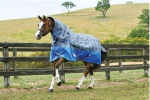 WeatherBeeta ComFiTec Premier Trio 200g Medium Weight Detach-A-Neck Turnout Rug Grey Plaid: 6 ft