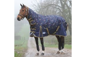 WeatherBeeta ComFiTec Plus Dynamic 220g Medium Weight Combo Neck Turnout Rug Pheasant Print