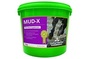 Global Herbs Mud-X Powder (1KG)