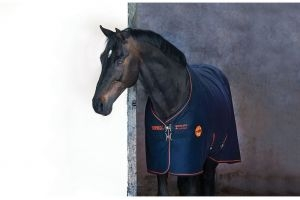 Horseware Rambo Ionic Fleece