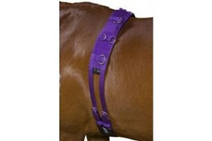 Kincade Deluxe Equigrip Lunge Roller Purple Pony