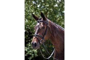Kincade Raised Padded Fancy Stitch Flash Bridle Brown Warmblood
