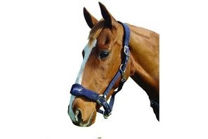 Roma Fleece Shaped Headcollar (Pony) (Navy)