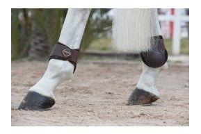LeMieux Derby ProJump Fetlock Boots: Brown: Medium