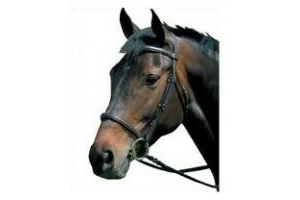Kincade Raised Cavesson Snaffle Bridle Brown Leather Size Full 228378 NEW