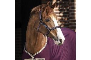 Horseware Amigo Headcollar Fig