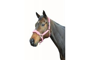 Roma Fleece Shaped Headcollar (Pony) (Berry)