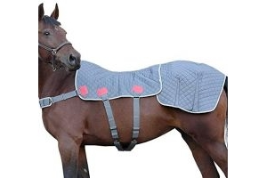 Equilibrium Therapy Magnetic Back & Quarters Pad