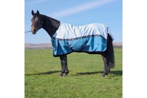 John Whitaker JW Healey No Fill Turnout Rug