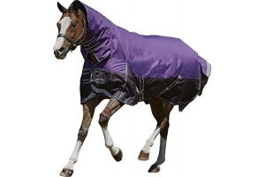 Weatherbeeta Comfitec Plus Dynamic Combo Neck Medium/Lite - Purple/Black - Size: 6'6