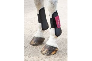 Shires ARMA Tendon Boot Cob Black/Pink