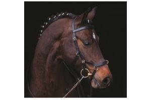 Horseware Rambo Micklem Multibridle Black Cob