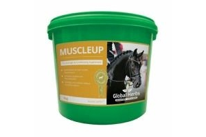 GLOBAL HERBS MUSCLEUP EQUINE HORSE PERFORMANCE 1kg New Stock