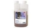 NAF Kof Eze for Horses - 500ml Bottle
