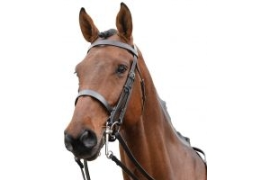 Kincade Show Weymouth Bridle Brown