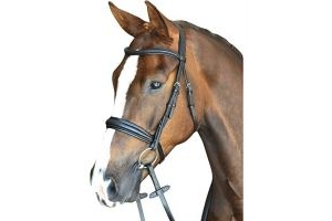 Collegiate Mono Crown Padded Raised Cavesson Bridle Black Full