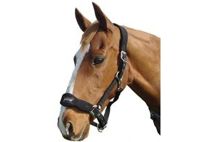 Roma Fleece Shaped Headcollar: Black: Full