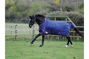 WeatherBeeta Original 1200D Foal Turnout - Navy/Red/White: 5ft3