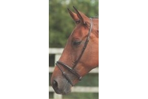 Shires Blenheim Flash Noseband-Havana Cob