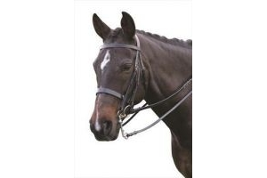 Kincade Double/Show Weymouth Bridle with Reins-Black Cob