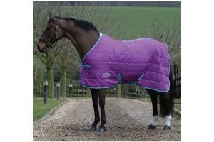 WeatherBeeta ComFiTec 210D Channel Quilt 110g Light-Medium Weight Standard Neck Stable Rug Purple/Blue/Yellow