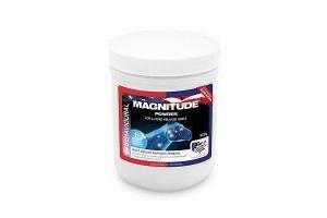 Equine America Magnitude Powder 908g