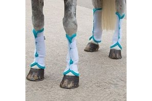 Shires Fly Turnout Socks (S, White/Green)