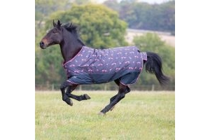 Shires Tempest Original 0g Lightweight Standard Neck Turnout Rug Flamingo
