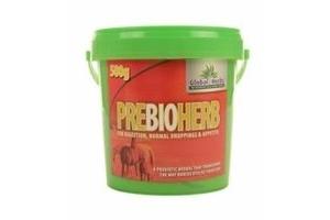 GLOBAL HERBS PREBIOHERB - 500 GM - GLB0610